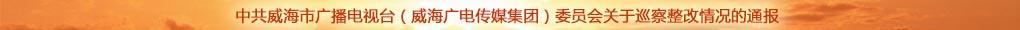 中共威海市广播电视台(威海广电传媒集团)委员会关于巡察整改情况的通报